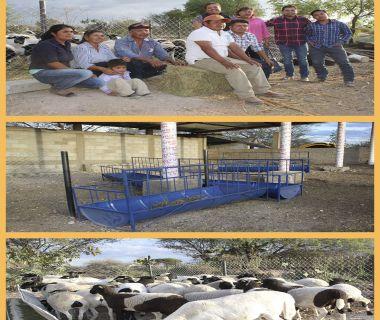 Proyecto productivo santiago ixtlahuaca